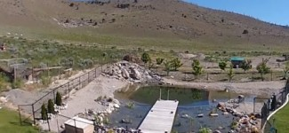 Natural Swimming Pool Construction (Part 2)