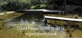 Ben Law's Organic Pool