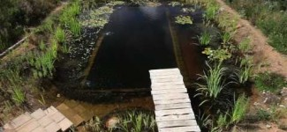 Natural Pools – Natural Pool selfbuild